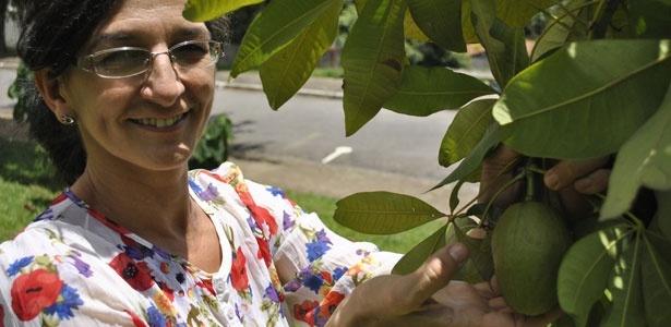 Neide Rigo mostra fruta conhecida como amendoim-de-árvore cujas sementes são comestíveis